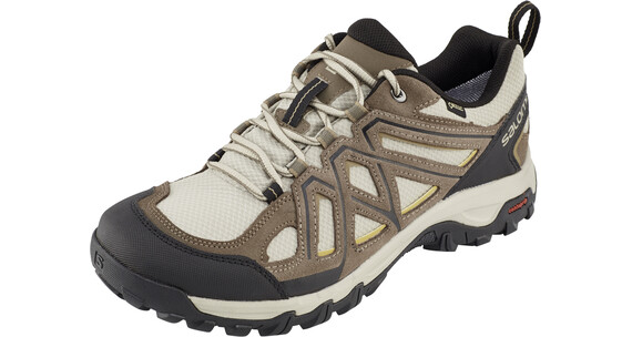 Salomon Evasion 2 GTX Shoes Men vintage kaki/bungee cord/honey